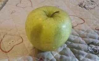 Alimentazione: mela  benefici  consigli  mele