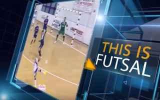 Sport: calcio a cinque  calcio  sport  futsal
