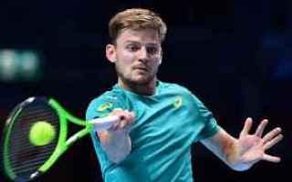 tennis grand slam atp finals goffin