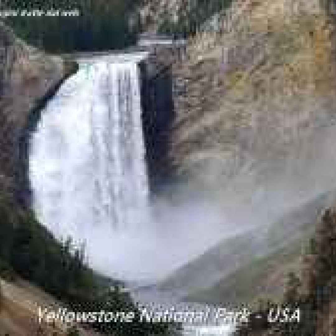 parco nazionale  yellowstone