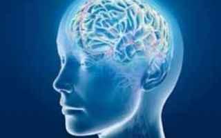 Psiche: intelligenza  mente  cervello
