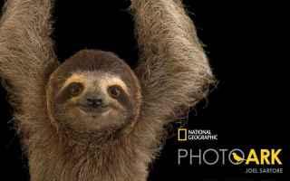 Mostre e Concorsi: mostra animali fotografia foto