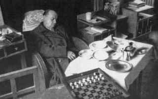 Alexandre Alekhine è stato uno scacchista – uno dei più grandi, mi dicono – dalla personalità