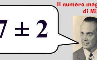 Siti Web: miller 7 user interface user experience