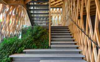 Architettura: bambù  boschi  città  foresta  legno