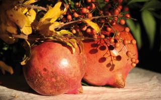 Alimentazione: melagrana  antiossidante