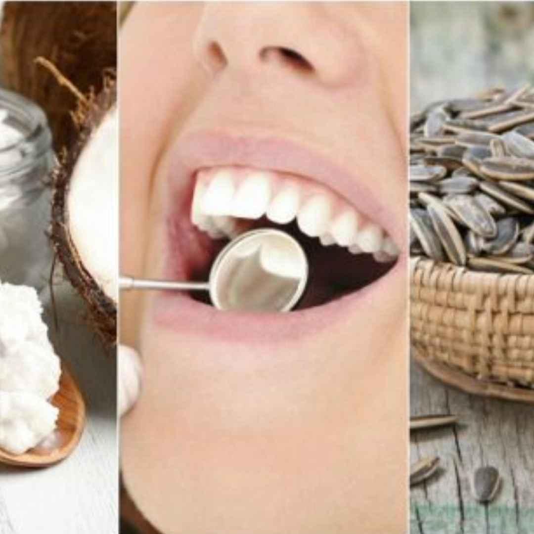 placca  denti