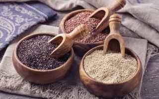 Animali: cane  alimenti cani  quinoa