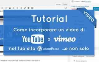 Blog: wordpress  youtube  vimeo  incorporare video