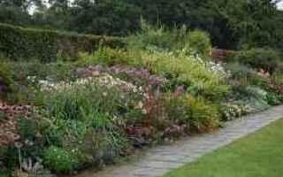 Giardinaggio: giardino  erbacee  progetto