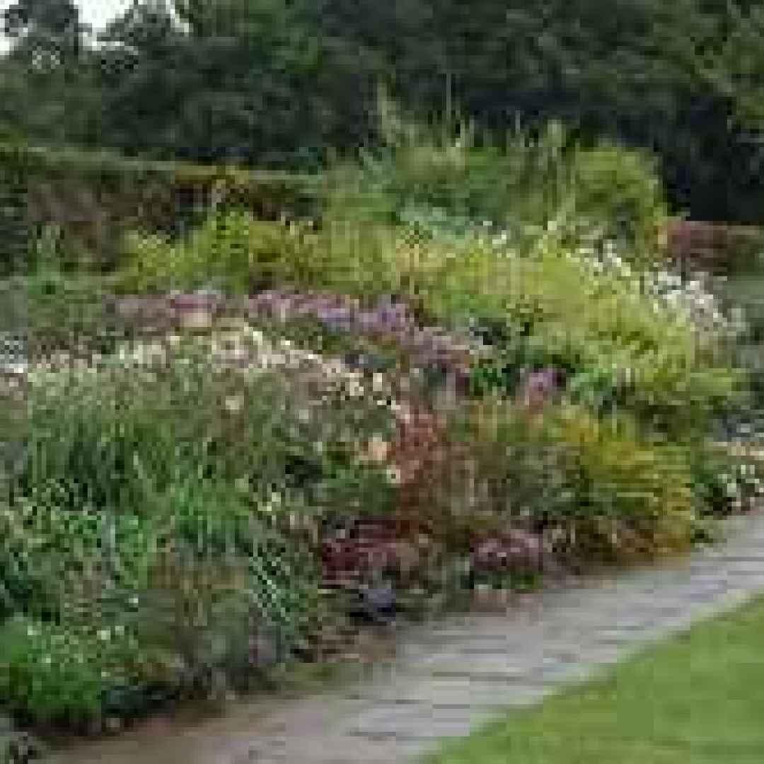Progettare un giardino di erbacee giardino for Progetto di un giardino