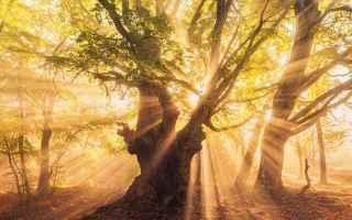 Psiche: spiritualità  morire  malattie