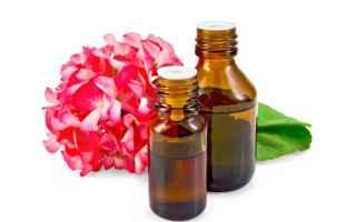 L' Olio Essenziale di Geranio contiene proprietà antisettiche, antifungine e antibatteriche nei c