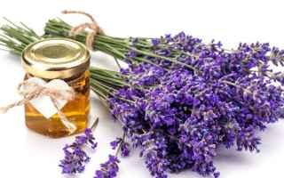 Bellezza: lavanda  olio essenziale