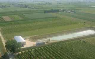Notizie locali: consorzio bonifica  romagna occidentale