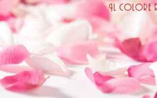 Web Design: pink rosa barbie  violenza