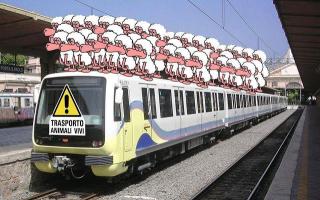 Roma: roma-lido; atac  trasporto pubblico