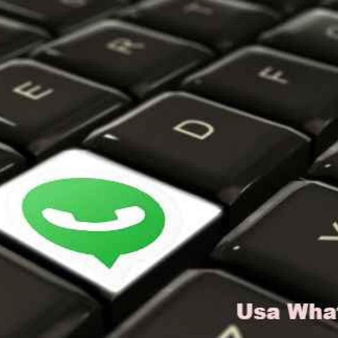 whatsapp  windows  chat  pc