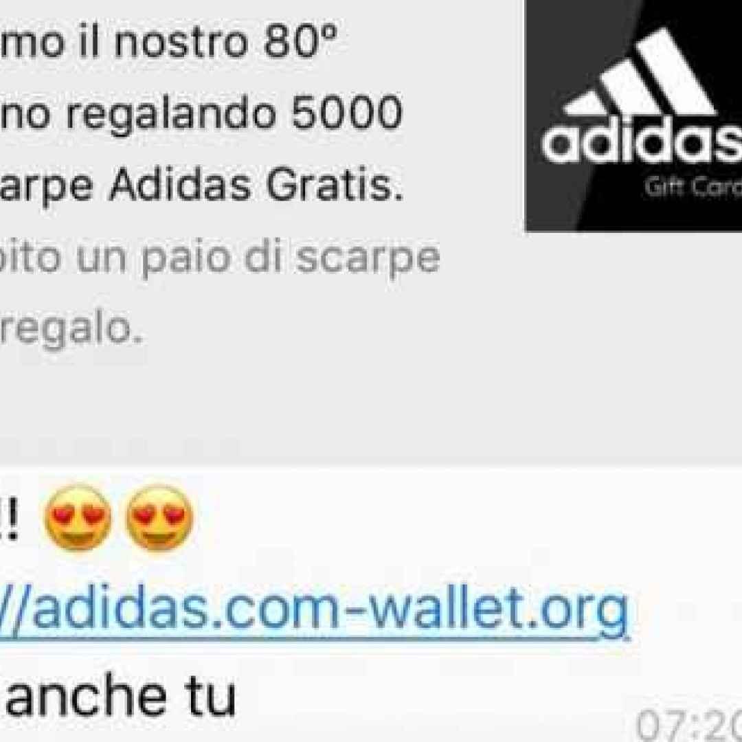 whatsapp  truffa  adidas