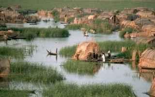 canne  laguna  palude  pianura