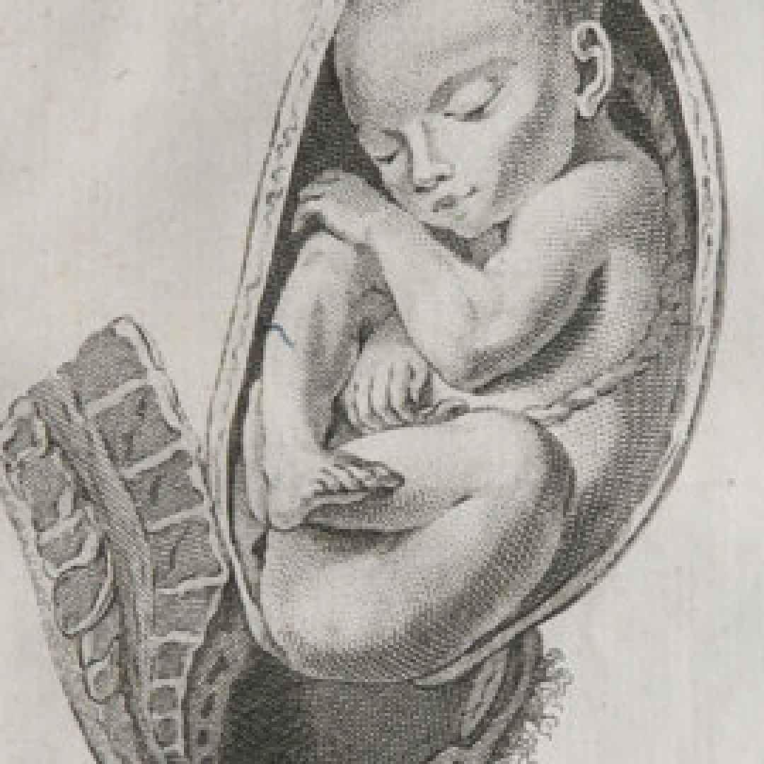 medicina ginecologia antica grecia