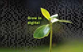 crescere in digitale google tirocini