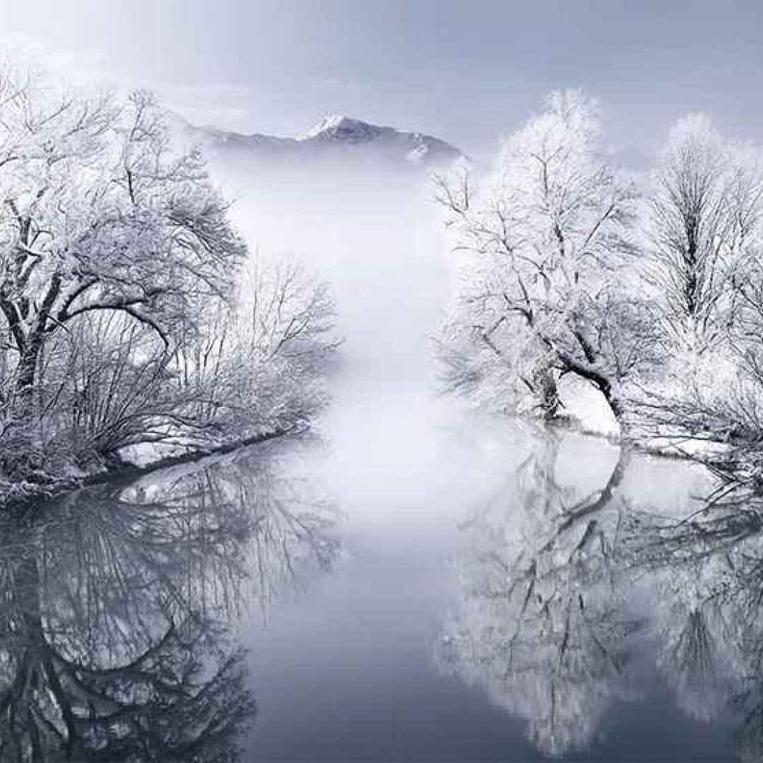 fotografia  inverno  photography  winter