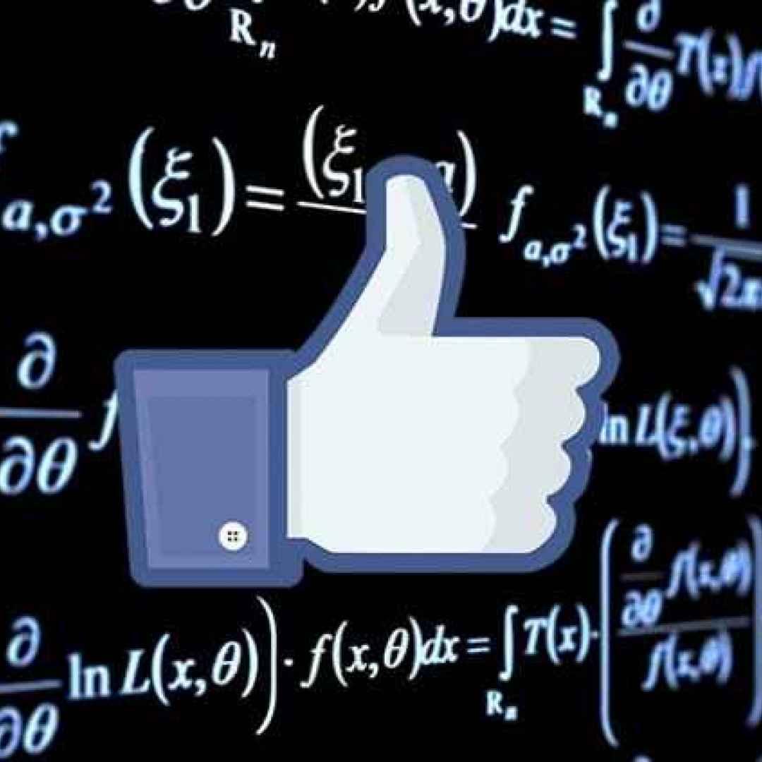 facebook  instagram  algoritmo