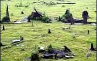 brasiliani  costruzione  stonehenge