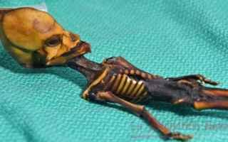 Dopo due decenni è stato svelato il mistero della mummia di Atacama. Era il 2003 quando fu ritrovat
