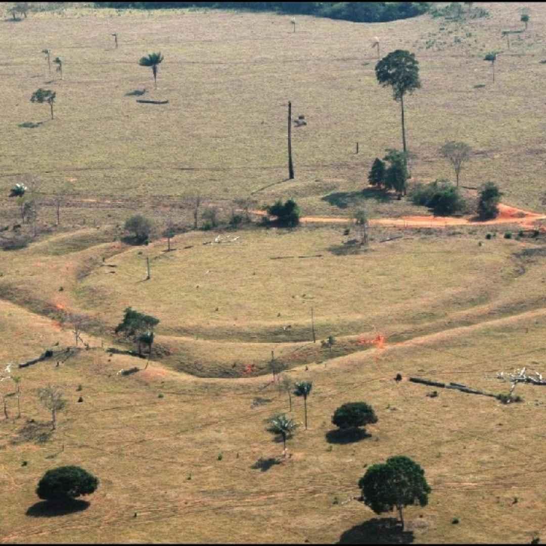 archeologia  brasile  scienza  luoghi