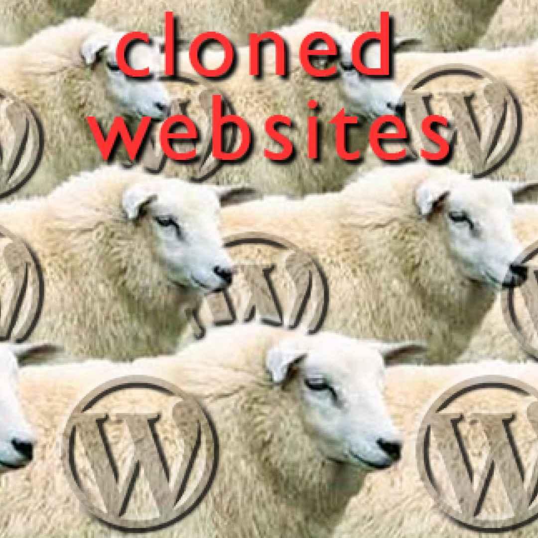 website  clone  wordpress  web design