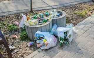 Ambiente: raee  rifiuti  ambiente  legge