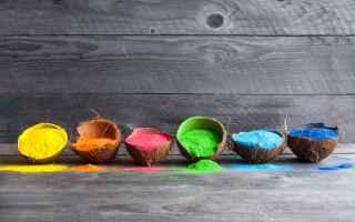 holi colors  holi color  holi festival