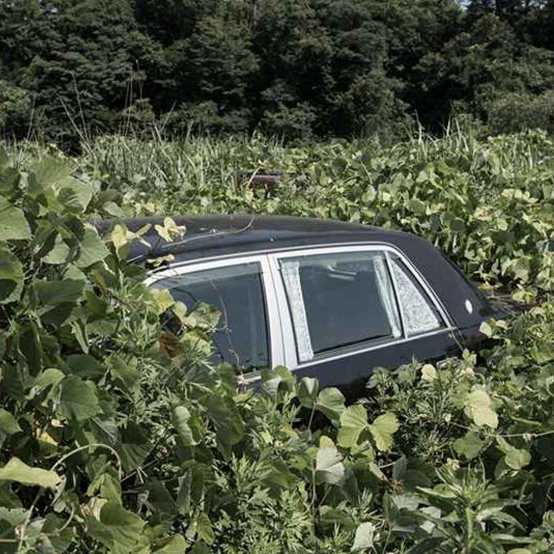 fotografia fukushima giappone