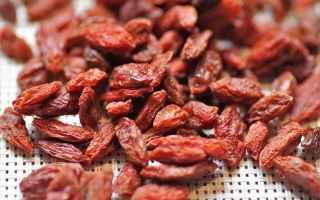 Alimentazione: bacche  frutti rossi  frutta secca