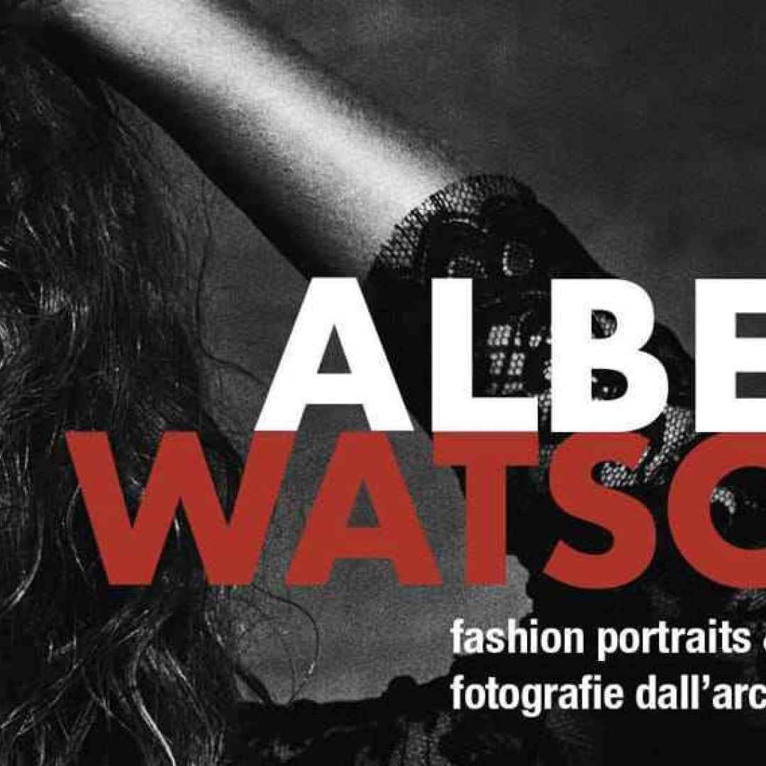 fotografia watson photography