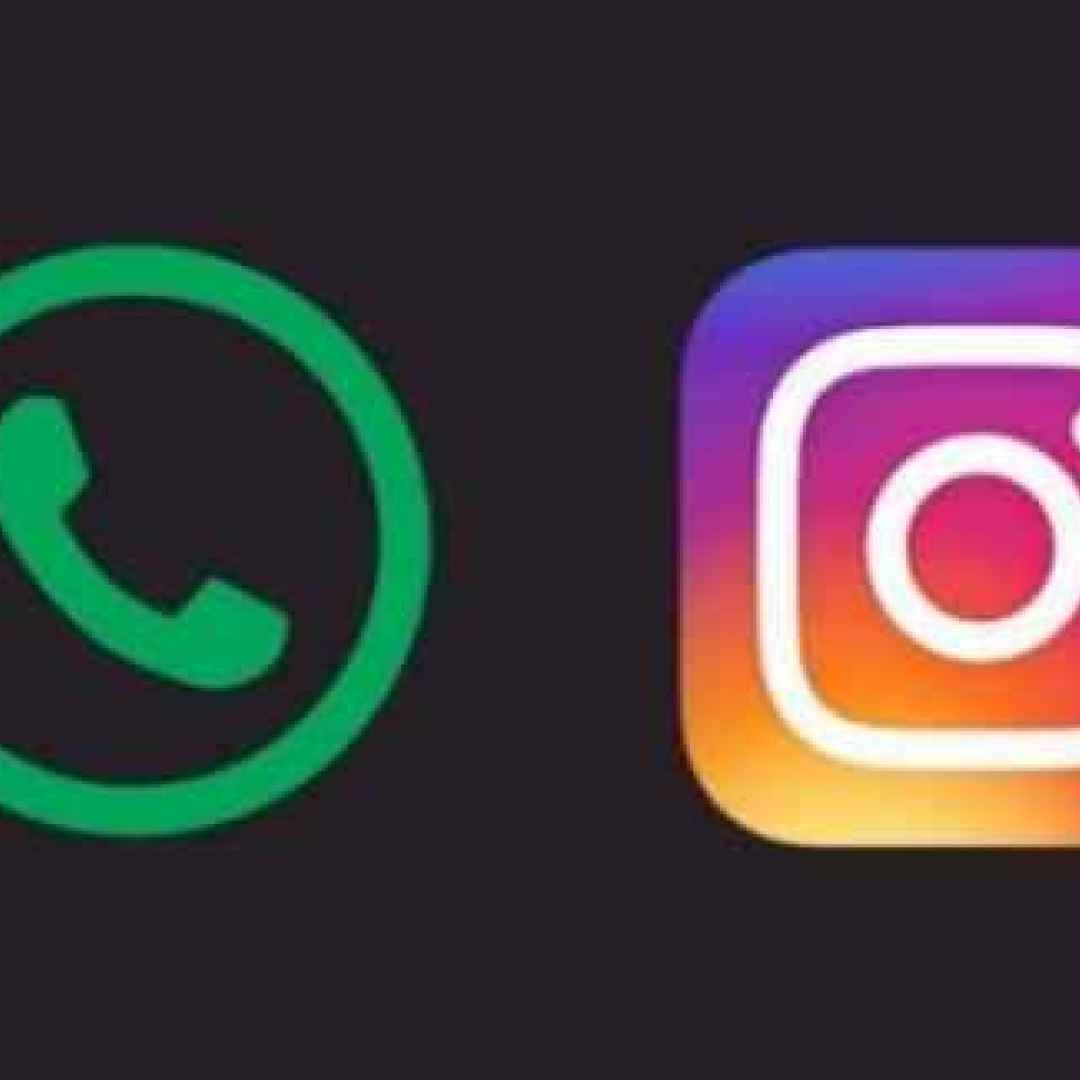 whatsapp  instagram