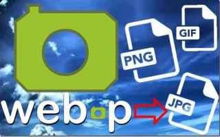 webp  jpg
