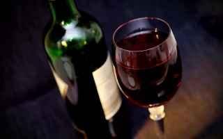 Alimentazione: vino rosso  resveratrolo  antiossidanti