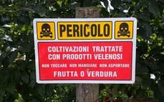 pesticidi  frutta e verdura