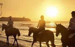 Viaggi: turismo  cavalli  iphone  viaggi  android
