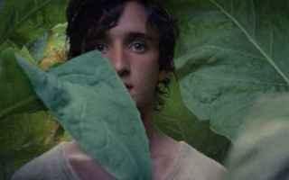 Cinema: cinema  nuovi film lazzaro felice