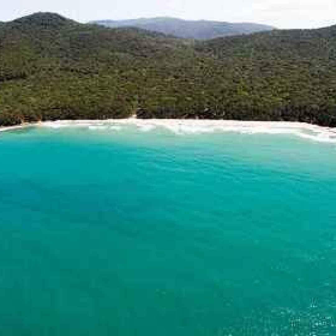 suggerimenti per le vacanze estive: il Golfo del Sole in Maremma