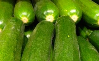 ricette   microonde  vegetariano