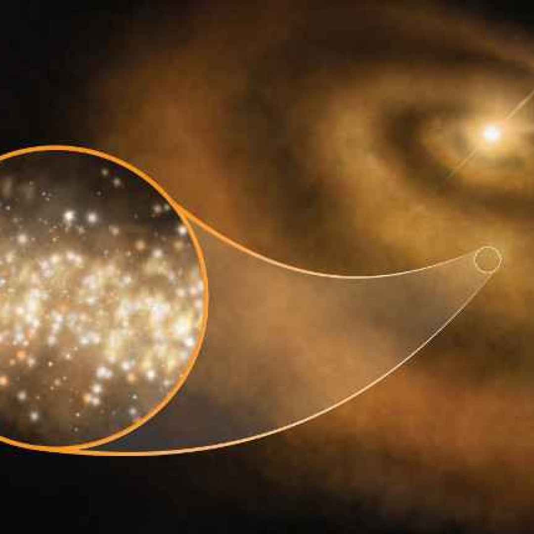 sistemi stellari  dischi protoplanetari