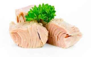 tonno in scatola  tonno  alimentazione