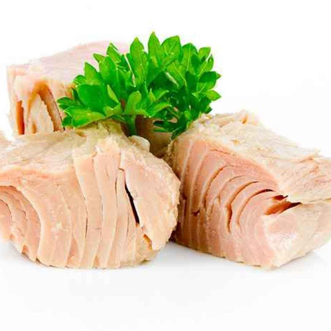 Il tonno usato per industria conserviera: tonnetto striato e tonno a pinna gialla