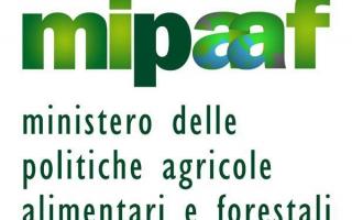 Politica: cultura  ministero agricoltura  turismo