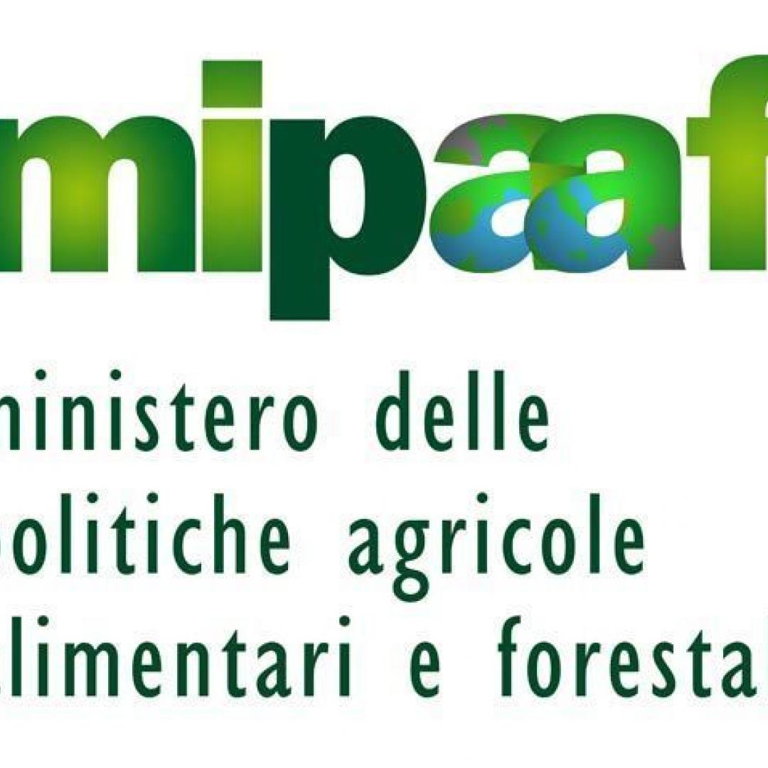 cultura  ministero agricoltura  turismo